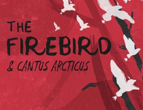 The Birds Hijack the CPO!